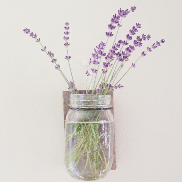 Summertime smells lavender freshlypicked farmersmarket local gooutside wedoitoutside