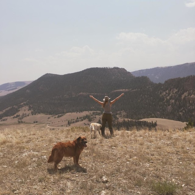 F R E E dom wedoitoutside adventure keepitwild campvibes wildernessculturehellip